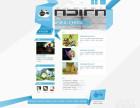阜成门网站建设 网站维护 网站设计 网站更新与改版