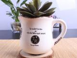 厂家直销   多肉植物 创意欧式复古个性 陶瓷小花盆 小花插