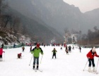 伏牛山纯滑雪2日游爽滑不限时,每周四周六发团