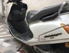 五羊本田100摩托车出售