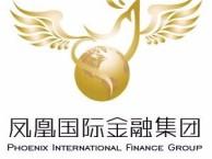 天津凤凰国际招商平台
