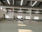 平湖林埭单一层厂房出租 层高10米