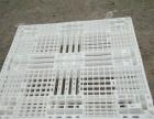 大量供应二手塑料卡板 进口卡板 数量有限