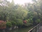 金水碧园印象桂林 3室2厅125平米 中等装修