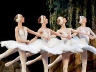 网红直播花样滑冰水上芭蕾编钟礼仪模特羽毛平衡术茶歇