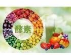 日本yooko酵素茶