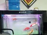 一套一个1.5米的鱼缸。包含所有鱼缸配件