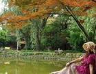 2015秋季 桐庐富春绿岛欢乐亲子一日游