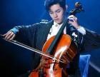 金山区小黑喵钢琴电子琴小提琴大提琴家教教学