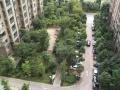 洱海庄园 精装公寓房 带全套家具家电 求爱干净人事居住