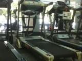 力动 RIDO 智能跑步机家用健身多功能静音折叠T5