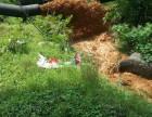 管道清淤 维修 清洗疏通 整改 更换 安装 补漏 漏水检测