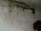 黄石 防水补漏 天沟女儿墙 厨房卫生间漏水