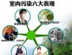 广州除甲醛除异味 越秀新房装修甲醛检测治理公司