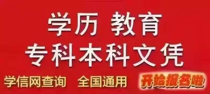 泰安成考网络教育招生报名中