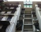 东明路 槟榔西里 三房 两厅一卫 一阳台 租金3800