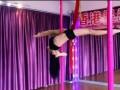 广州舞蹈培训班 广州爵士舞培训 广州钢管舞培训