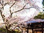武汉零基础日语培训、出国旅游日语、精英日语