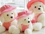 生日女朋友礼物超萌粉色戴帽贵宾狗狗公仔毛绒玩具儿童礼物