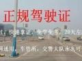 丽江学车有丰富带教经验的教练教学