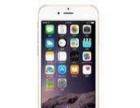 苹果6国内行货64G有票