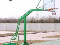 湖南怀化场馆摇控电动篮球架价格