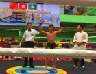 深圳强身搏击俱乐部 青少年 成人专业散打训练