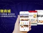 广东环球捕手分销系统模式开发中心