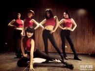 零基础舞蹈培训丨想学跳舞没基础丨零基础专业教学