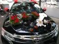 益阳市 520 婚庆车队--丰田凯美瑞车队