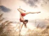 保亭職業演出鋼管舞爵士團體舞空中舞蹈零基礎專業教學推薦工作