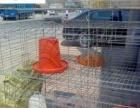 厂家直销孵化机 养殖设备 脱毛机 孵化机配件等