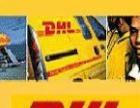 霸州DHL國際快遞霸州DHL電話霸州DHL國際貨運