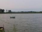 鱼塘转让先生店向东3公里 土地 30000平米
