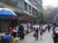 出租清城商业旺铺鹤堂街近市场