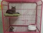 三层不锈钢猫笼低价转让,送进口猫砂盆