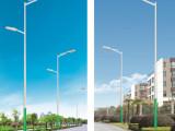 【企业集采】6米路灯7米路灯8米9米路灯道路照明亮化