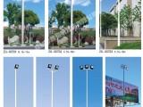 新农村太阳能路灯户外6米超亮持久LED户外庭院灯厂区工厂路灯