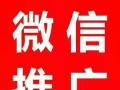 专业网络tuiguang
