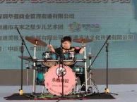 南通南大街乐器培训班,南通孩子较常学的乐器