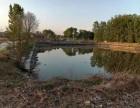 平谷鱼塘鱼池垂钓园农家院出租