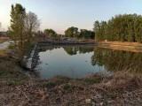 平谷魚塘魚池垂釣園農家院出租