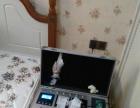 专业家电清洗,油烟机,空调,冰箱,洗衣机