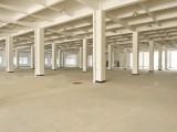 市区紧缺全新独幢5万方高标准仓库 提供仓储物流服务