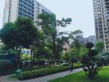 单间出租 个人无中介中和单间出租软件园世纪城天府三街环球中心