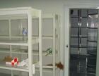 提供实验室中央台、药品柜、通风柜、实验台 等