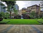 深圳服务好环境好设施好护理专业的高档养老院