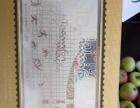 里约2016年奥运会纪念银钞