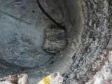 重庆管道清洗化粪池清理