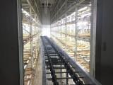 白玉菇自动化生产线设备